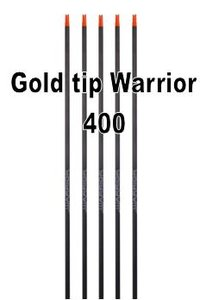 Futs carbone Gold Tip Warrior Spine 400