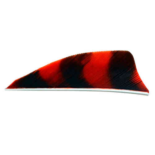 "Natural Feathers Shield 2.25 "" RW"