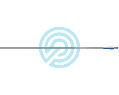 Easton Arrow Apollo Fletched With Points Loose pack 12